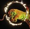 Цирки в Капустином Яре